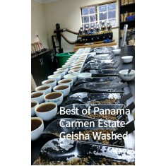 Best of Panama 2016 - Auction Lot - Carmen Geisha Washed