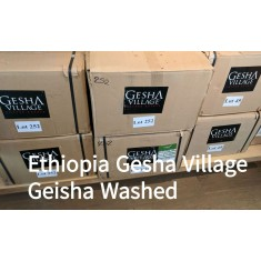 Ethiopia Gesha Village 2017 - Lot 252 Washed